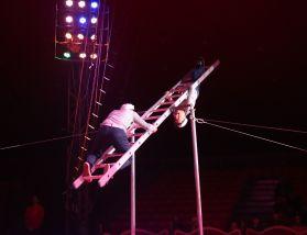 Clowns Ladder